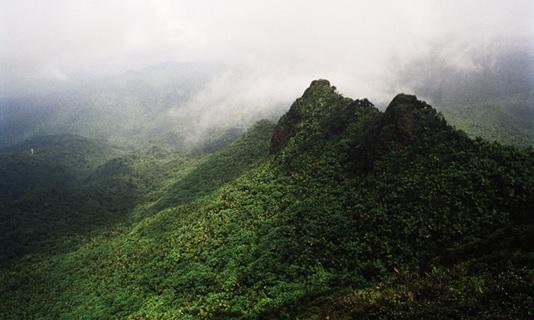 Cialis Mountains In Puerto Rico